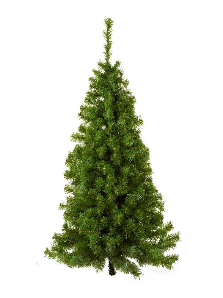 Heine wand weihnachtsbaum gr n im heine online shop kaufen - Weihnachtsbaum wand ...